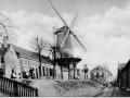 """Middelharnis Westdijk korenmolen """"De Hoop"""""""